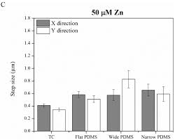 materials free full text the effect of exogenous zinc