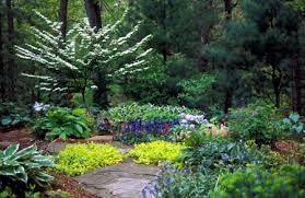 Shady Backyard Landscaping Ideas Shady Lawn Alternatives Msu Extension