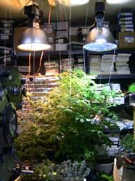 250 watt hps grow light awesome hps grow lights and hid grow light exhaust setup diagram see