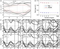 electronics and optoelectronics of quasi 1d layered transition