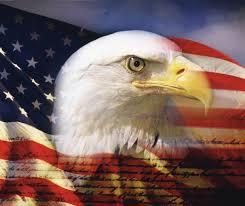 Hd American Flag American Bald Eagle Wallpapers Wallpaper Cave