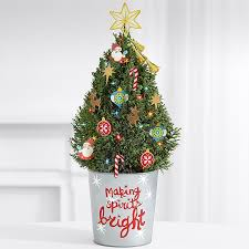 Mini Decorated Christmas Trees Mini Christmas Tree Delivery Send Real Decorated Mini Trees