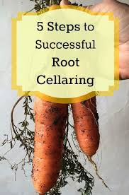 best 25 root cellar ideas on pinterest roots store cellar and