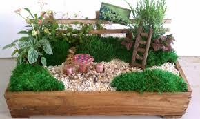 Dish Garden Ideas Best 25 Dish Garden Ideas On Pinterest Succulent Pots Indoor