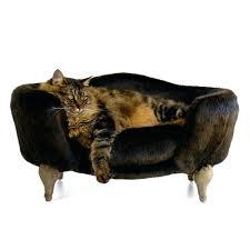 repulsif canapé canape pour canapac fauteuil pour cheins et chats repulsif