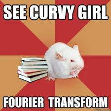 Curvy Girl Memes - curvy girl meme bigking keywords and pictures
