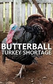 with thanksgiving coming up fast butterball has announced a