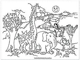 zoo coloring pages preschool zoo animal coloring pages for preschool zoo coloring sheet alphabet