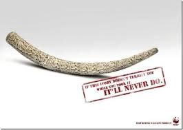 Home Decor Ads Wwf Ads With A Touch Ortaps Blog