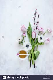 Image Of Spring Flowers by Flat Lay Of Spring Flowers Arranged Around A Teacup On A Painted