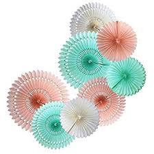 paper fan tissue paper fan collection 5 large assorted fans