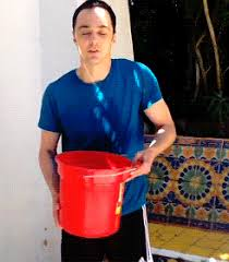The Challenge Gif Let S In Charity The Als Challenge