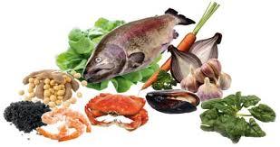 pesci alimentazione amtra mangimi alimentazione pesci in forma grazie agli