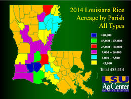 Louisiana Map Of Parishes by Rice Acreage Maps