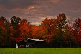 Wallpaper Barn Autumn Mail Pouch Barn Structures Free Nature Pictures By