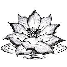 18 latest lotus tattoos designs