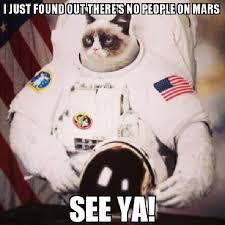 Best Grumpy Cat Memes - grumpy cat memes space kitty wattpad