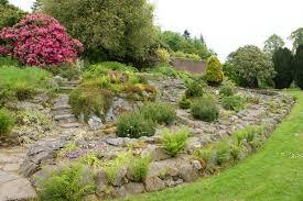 garden design with rocks ideas