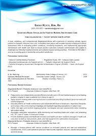 professional nursing resume exles nursing resume sles for new graduates