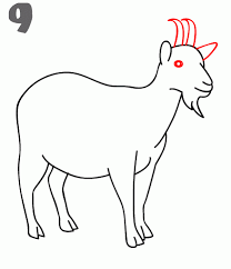 how to draw a goat step by step