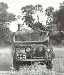 land rover africa land rover series 1 stuff i like u0027n u0027 that