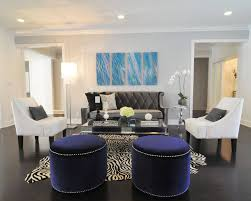 Blue Sofa Living Room Design by 17 Zebra Living Room Decor Ideas Pictures