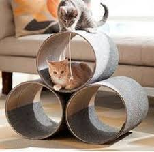 idee für katzenbaum fur buddies pinterest living rooms room
