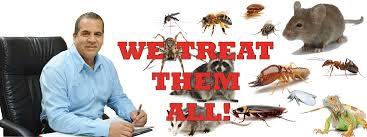aaa pest control south florida pest exterminator