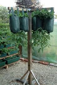 How To Make An Urban Garden - how to make a hanging support for an upside down tomato plant
