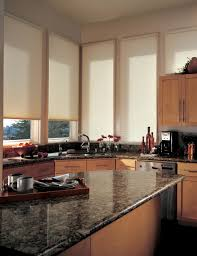 blinds for kitchen window home design