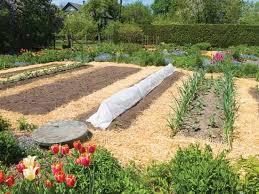 Garden Mulch Types - the best mulch types for your seasonal garden farm and garden