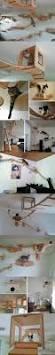 Cool Cat Furniture 291 Best Cat U0027s Place Images On Pinterest Cat Stuff Cat