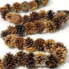 Decorating Pine Cones With Glitter Pinterest U2022 The World U0027s Catalog Of Ideas