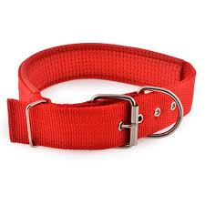 Comfortable Dog Collars Buy Dog Collars Personalized Leather Dogs Collars At Best Price