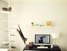 katzenbaum wohnen pinterest cat and animal