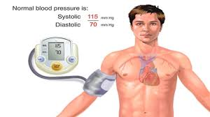 how blood pressure works animation understanding blood pressure