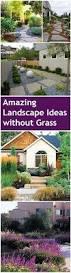Landscape Design Backyard by Best 25 Large Landscaping Rocks Ideas On Pinterest Boulder