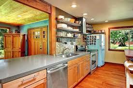 birch kitchen cabinets pros and cons birch cabinets abundantlifestyle club