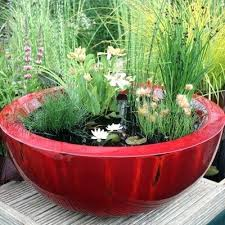 Container Water Garden Ideas Plants For Water Garden Alexstand Club