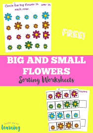 flower size sorting printables look we u0027re learning