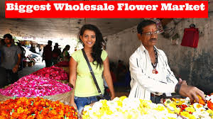 Wholesale Flowers Near Me Mumbai U0027s Biggest Wholesale Flower Market Motovlog L Dadar Phool
