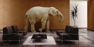 Elephant Living Room | the elephant in the social media living room joel comm by joel comm