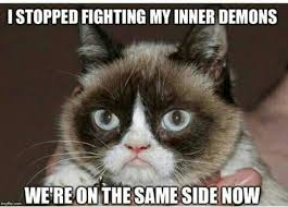 Kitty Cat Memes - pin by dianne lang on grumpy cat pinterest grumpy cat humor and