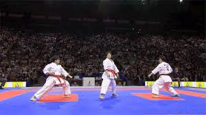 imagenes gif karate martial arts fight gif find share on giphy