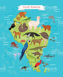 Soth America Map animals on south america map stock vector art 827964000 istock