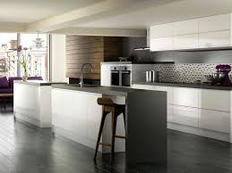 Black Gloss Kitchen Ideas by Cabinet Doors Elegant Kitchen Ideas Light Brown Plywood