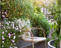 backyards beautiful small backyard vegetable garden design ideas