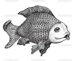 easy pen drawings pencil drawing of fish pencil sketch drawing