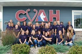 country view animal hospital in neenah wi home