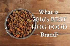top 10 dog foods analysis what is the best dog food brand in 2016